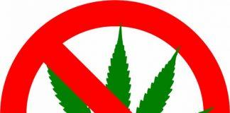 Marijuana illegal 420
